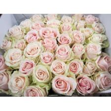 """Букет из роз """"Светлые мечты"""""""